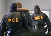В краевом минлесхозе ФСБ изъяла документы после обысков