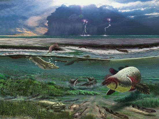 Древнейшее  четвероногое животное перевернуло представление об их эволюции