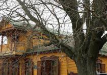 Рязанский дуб стал памятником живой природы