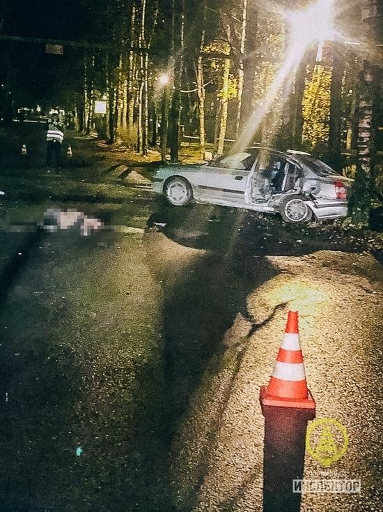 В Ленобласти пьяный водитель врезался в дерево, погибла пассажирка