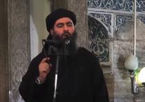 NBC: курдский разведчик добыл для США нижнее белье главаря ИГ