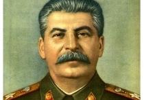 В новосибирском Академгородке юбилей Сталина отметят конференцией