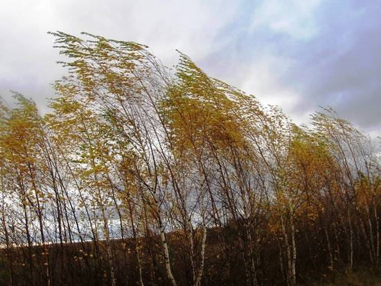 В Челябинской области до +9, порывистый ветер