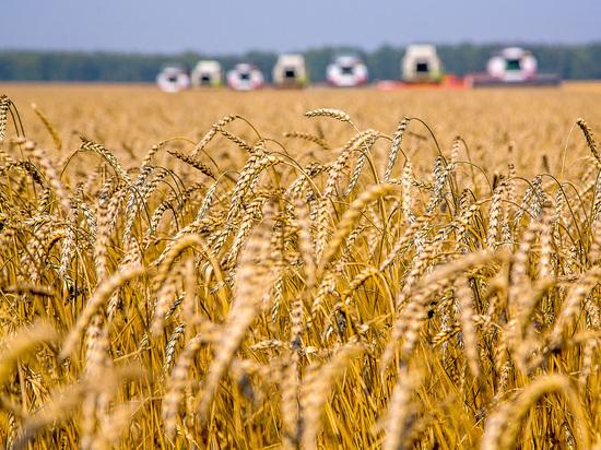 Сельскохозяйственные земли включат в специальный реестр