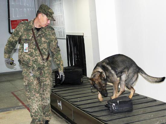 Как в аэропорту Улан-Удэ распознают вирусы, радиацию и вычисляют контрабандистов