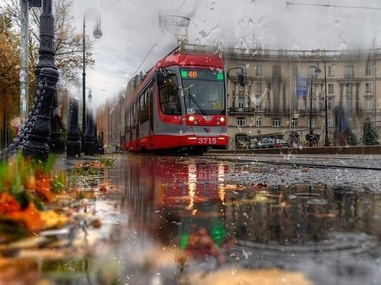 В Петербурге пенсионер подрался с мужчиной из-за места в трамвае