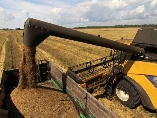 В Ивановской области намолотили почти сто двадцать тысяч тон зерна