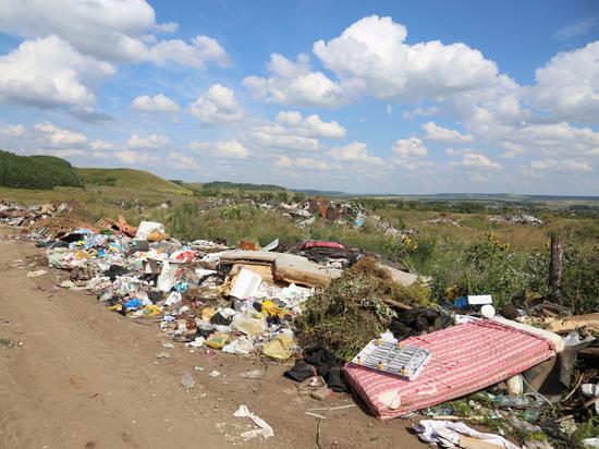 Принято решение приобрести мини-мусоросжигательный завод