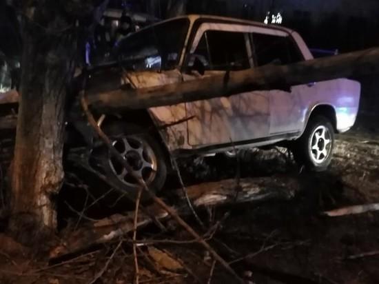 Врезавшегося после погони в дерево водителя «Жигулей» разыскивают в Чите