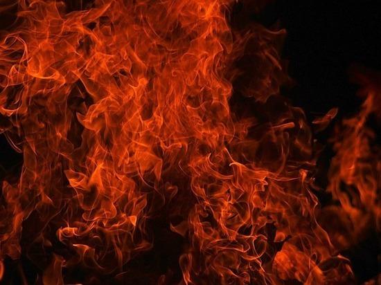 Тело мужчины найдено в сгоревшем вагончике в Чите
