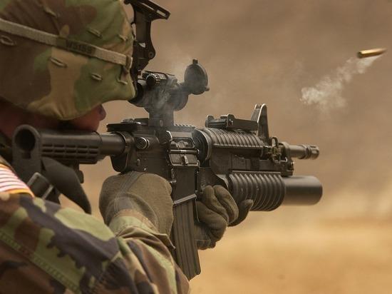 Производители пахлавы в Москве поставляли оружие боевикам в Сирию