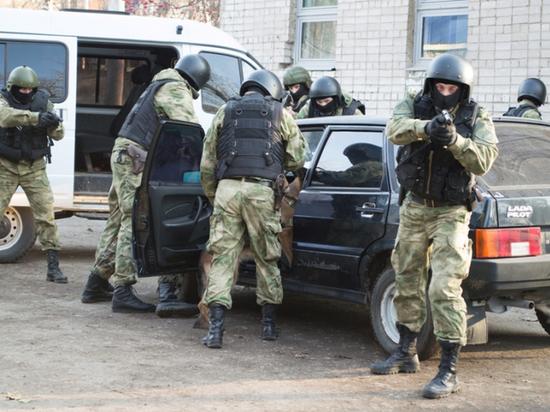 Архангельская полиция поймала двух наркодилеров с 40 пакетами синтетики
