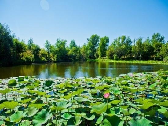 Природные парки Волгоградской области могут стать брендом региона