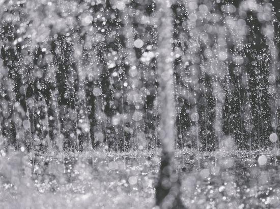 МЧС предупреждает – Ярославлем сначала зальет дождем, а потом завалит снегом
