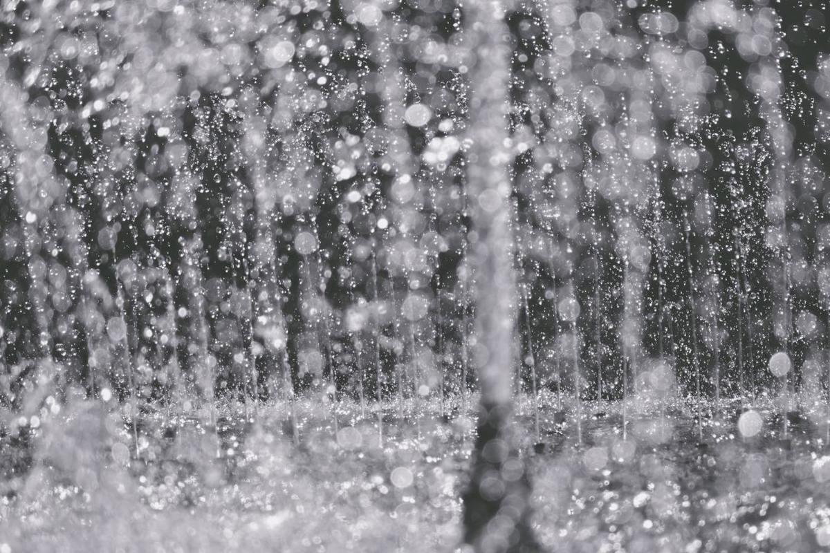 вам картинки зима дождь без выстрел