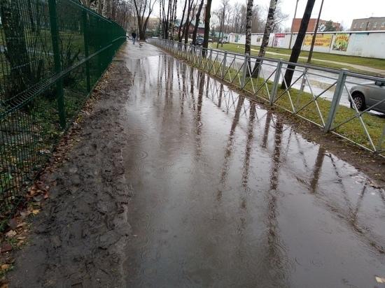 В Пскове за двое суток выпала месячная норма дождей