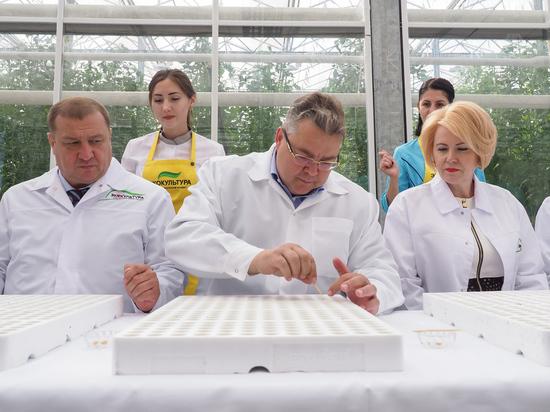 Ставропольский филиал Россельхозбанка лидирует в корпоративном рейтинге