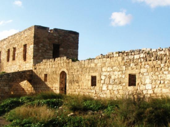 Лесопарк Кабри – археологические памятники и оливки