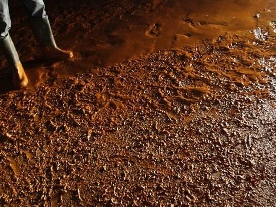 Под Малоярославцем устроили свалку опасных гальванических шламов