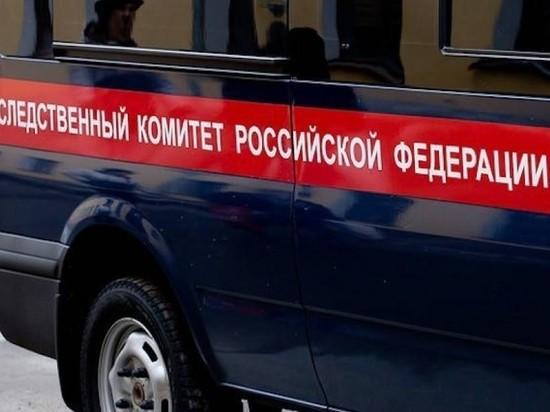 В Челябинске задержаны двое мужчин, которых подозревают в нападении на школьниц