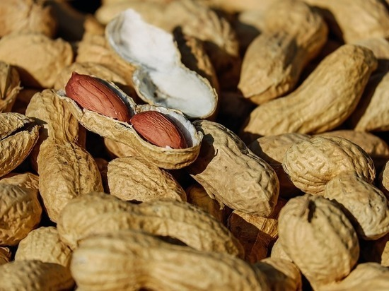 Диетологи сообщили о смертельной опасности некоторых орехов