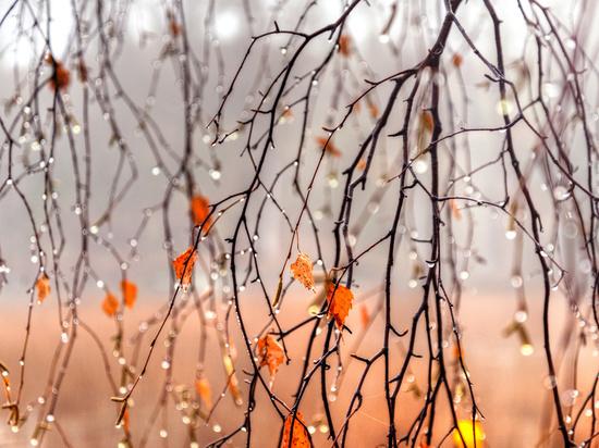 В Челябинской области до +11, местами дожди, сильный ветер