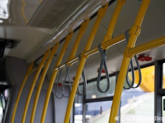 Пожилая калужанка травмирована в салоне автобуса