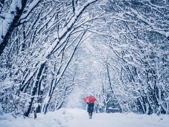 В Новосибирск идет зима – теперь уже точно