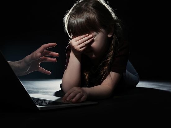 В Новосибирске задержан подозреваемый в виртуальной педофилии
