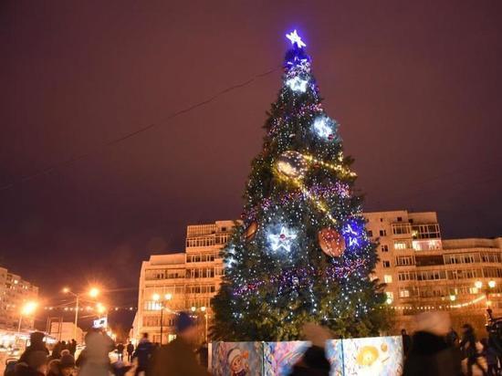 11 новогодних ёлок появятся в Магадане до середины декабря