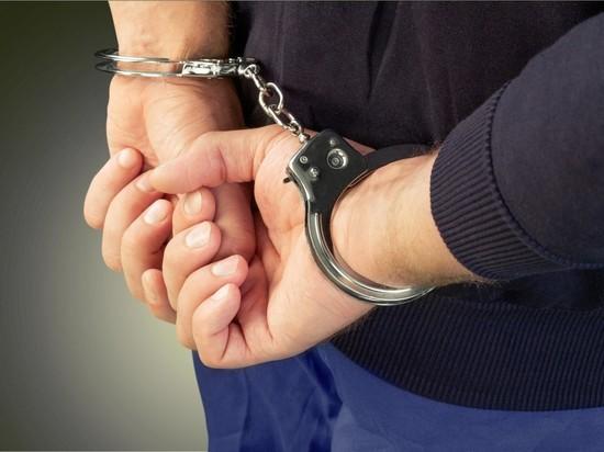 Суд отпустил водителя, прокатившего на капоте полицейского