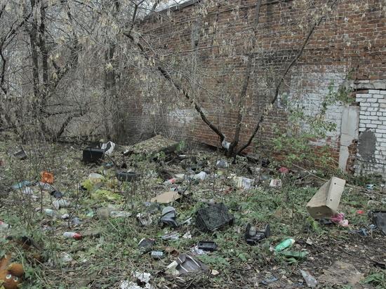 Более 185 свалок убрали в Сормовском районе Нижнего в 2019 году