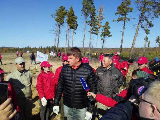 35 миллионов деревьев: за осень волонтеры по всей стране высадили огромный лес
