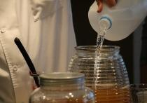 Чайный гриб оказался опасен для здоровья
