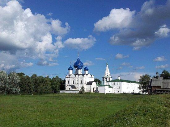 Вчера, 8 ноября, в Суздале состоялось внеочередное заседание горсовета на котором был переизбран действующий сити-менеджер Сергей Сахаров