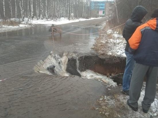 Работы на улице Луганской, затопленной из-за бобров, продолжаются