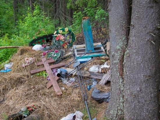 Соцсети: в Новомосковске валят памятники на кладбище, чтобы перепродать места