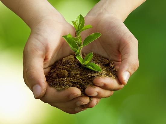Забайкалье приближается к срыву нацпроекта «Экология»
