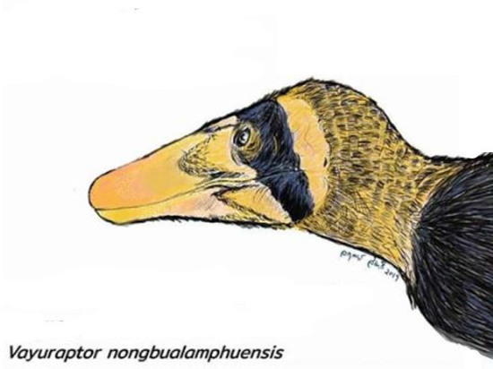 В Таиланде обнаружили «младшего брата тираннозавров»