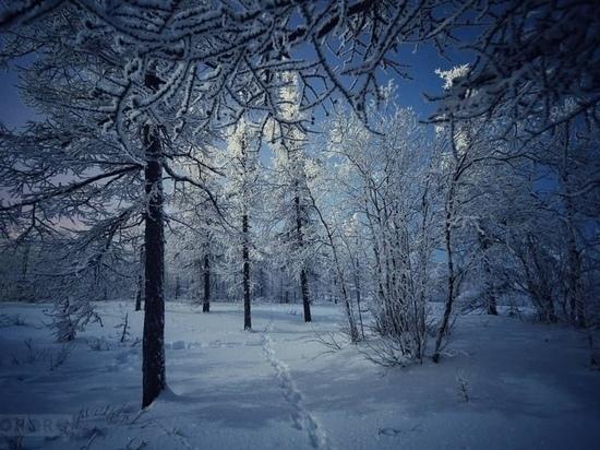 Ветер и холод ожидаются в Новом Уренгое 13 ноября