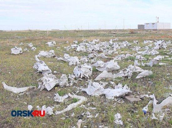 Многодетным семьям Орска выделили непригодную для строительства жилья землю