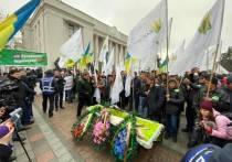 Украинская оппозиция принесла к Верховной Раде гроб со свиньей