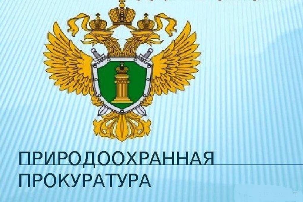 Мэрия Ярославля должна очистить Волгу по приговору суда