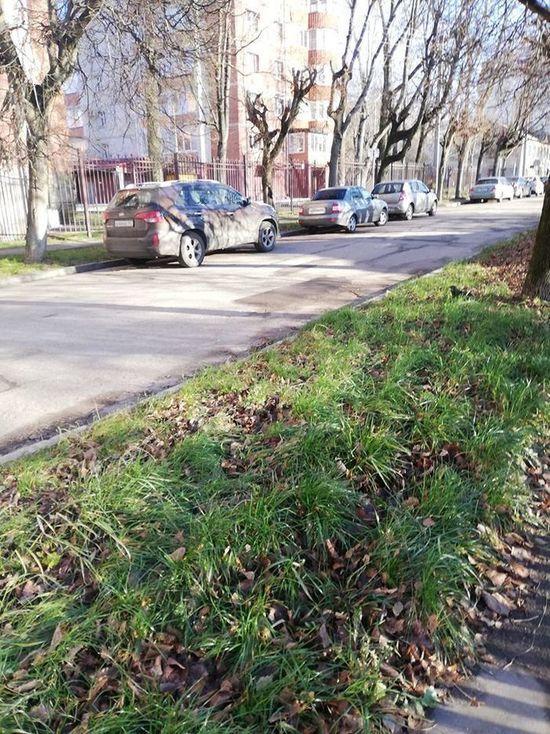 В пятницу в Смоленской области будет сухо и даже местами солнечно