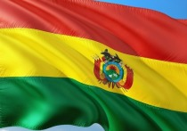 В МИД сравнили действия при смене власти в Боливии с госпереворотом