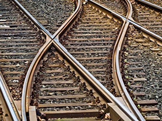 Двое погибли под колесами поезда за сутки в Подмосковье