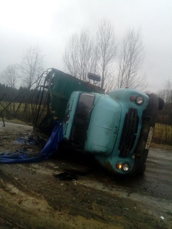 Побег из телятника: в Ярославской области перевернулась машина с телятами
