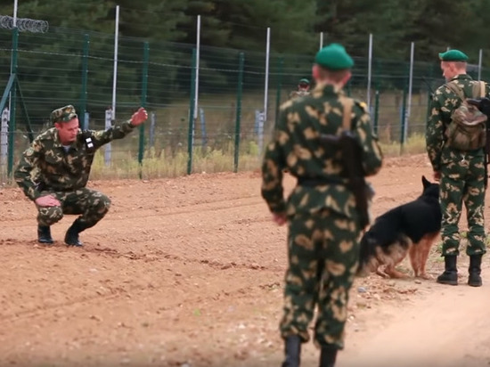В Совфеде отреагировали на слова Лукашенко о новом пограничном контроле