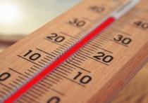 Петербург побил температурный рекорд 14 ноября