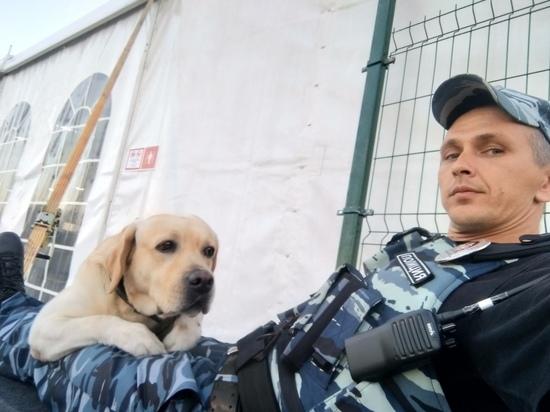 О своем четвероногом напарнике с нескрываемым восхищением читателям «МК в Крыму» рассказал полицейский-кинолог Александр Осьмага.